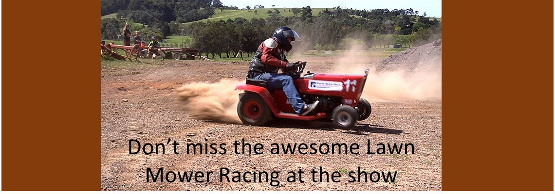 Lawn Mower Racing 2019
