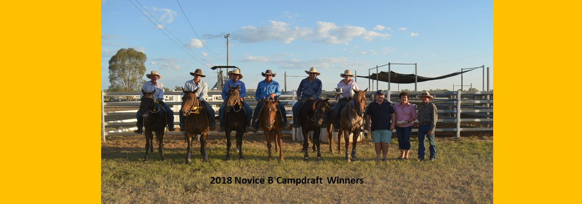 Novice B Campdraft Winners 2018