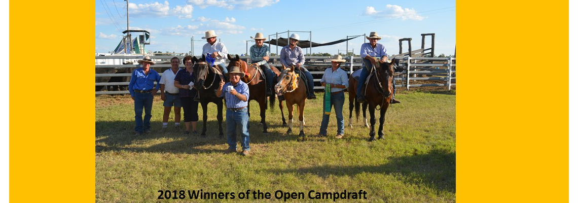 Open Campdraft Winners 2018