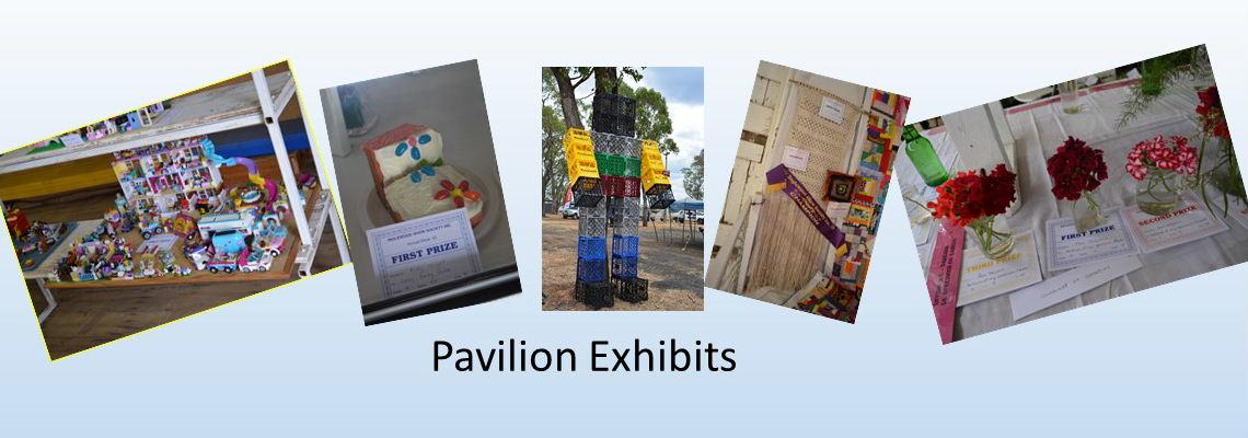 Pavilion Slide 5